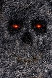 Skull in burnt grass. Abstract skll with red eyes in black burnt grass Royalty Free Stock Photography