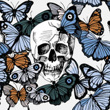 Skull with butterflies Stock Photo