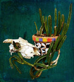 Skull with cactus in a Mexican style mosaic pot Royalty Free Stock Photography