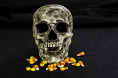Skull and Candy Corn Stock Photography