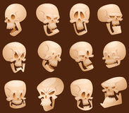 Skull cartoon faces vector illustration. Funny pirate skull cartoon faces vector illustration. Anatomy human isolated scary fear design. Halloween horror Royalty Free Stock Images