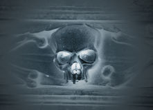 Skull carved in stone Stock Image