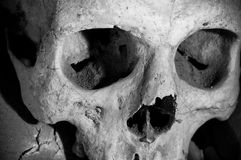 Skull of Cemetery in Naples - Italy Stock Photo