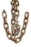 Bony Skull with Chain Royalty Free Stock Photos