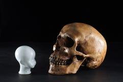 Skull with child head Stock Photo