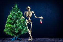 Skull and christmas tree Stock Photography