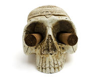 Skull and cigar Stock Photography