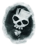 Skull in a circle Royalty Free Stock Photos