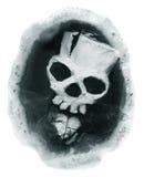 Skull in a circle Royalty Free Stock Photos