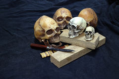 Skull with Classic Knives and wood on black background - Still life style Classic Knives Stock Image