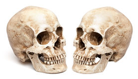 Skull-close mouth. Stock Images