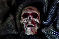 Skull in the cloth wrap and blood  over black. Royalty Free Stock Images
