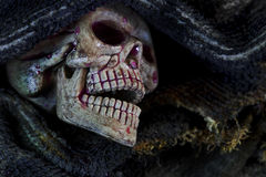 Skull in the cloth wrap and blood  over black. Stock Photos