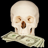 Skull clutched in teeth bunch of money Royalty Free Stock Photo