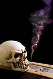Skull on coffin Stock Photo