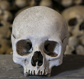 Skull. The collection of bones in the Ossuary Royalty Free Stock Image