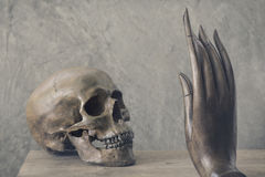 Skull confront with hand. Still life photography : skull confront with hand of buddha image in good and evil concept in vintage color tone Royalty Free Stock Image