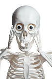 Skull covering his mouth with hands Royalty Free Stock Photography