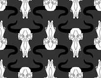 Skull cow pattern. head of skeleton bull background. Death of an Stock Photography