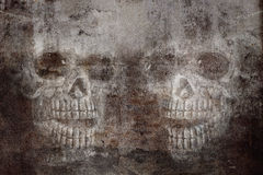 Skull on cracked concrete and grunge  wall  background. Royalty Free Stock Images