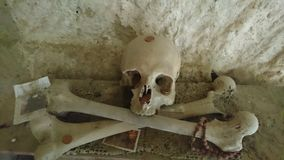Skull cross Stock Image