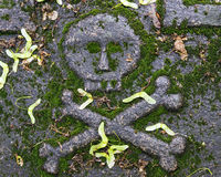 Skull and cross bones on the tombstone Royalty Free Stock Photo