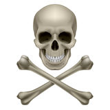 Skull and crossbones. Illustration on white background vector illustration