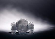 Skull and crossbones ice Stock Image