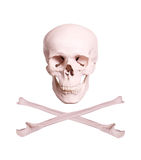 Skull and crossbones. On white Royalty Free Stock Photography