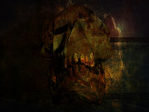 Skull in a crypt Stock Photography