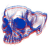 Skull 3D Royalty Free Stock Photos