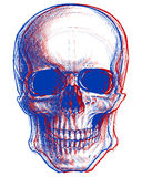 Skull 3D. Skull drawing line work in conceptual 3D. Vector for use Stock Images