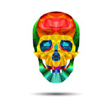 Skull  death skeleton dead head illustration danger human Royalty Free Stock Image
