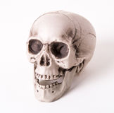 Skull decoration Royalty Free Stock Image