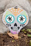 Skull Decoration Stock Photos