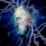 Skull Design vector illustration