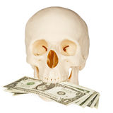 Skull devours money, isolated on white Royalty Free Stock Photo