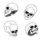 Skull in different positions Stock Photos