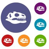 Skull of dinosaur icons set Stock Images