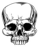 Skull drawing Royalty Free Stock Photo