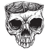 Skull drawing 02. Skull drawing vector for use stock illustration