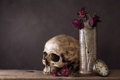Skull with dry rose in ceramic vase Royalty Free Stock Photography