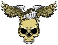 Skull and eagle Royalty Free Stock Photography