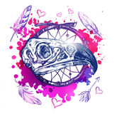 Skull Eagle Boho Tattoo. With bird skull colored watercolors and feathers around vector illustration Stock Photography