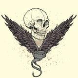 Skull emblem Stock Images