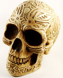 Skull with engraving Royalty Free Stock Images