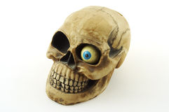 Skull with eye. Skull with one blue eye on white background Stock Photography