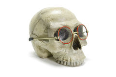 Skull with Eyeglasses Royalty Free Stock Images
