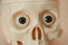 A skull with eyes. Watching with great astonishment Stock Image