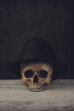 Skull with Fedora Hat. On wood stock photos